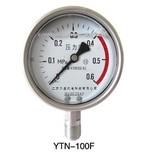 不锈钢压力表-YTN-100