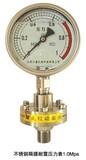 不锈钢隔膜耐震压力表1.0MPA