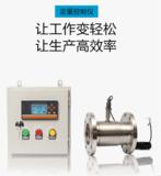 柴油定量控制仪表